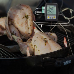 ThermaQ WiFi Professional Barbecue Thermometer and Logger